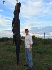 exotic hunts in florida